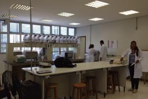 laboratorio-de-analises-clinicas-10ADF441A-CF89-4235-A93A-321D04CA0754.jpg